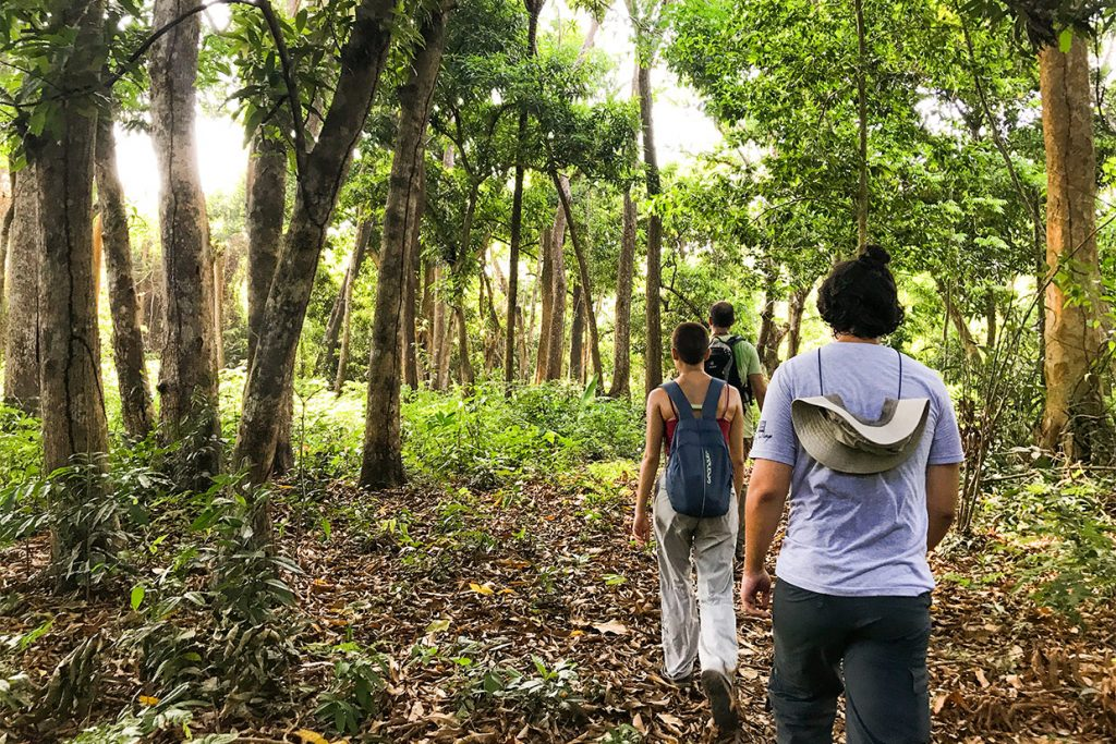 viagem do 12º ano para a amazônia 3 - Colégio Micael Ensino Médio