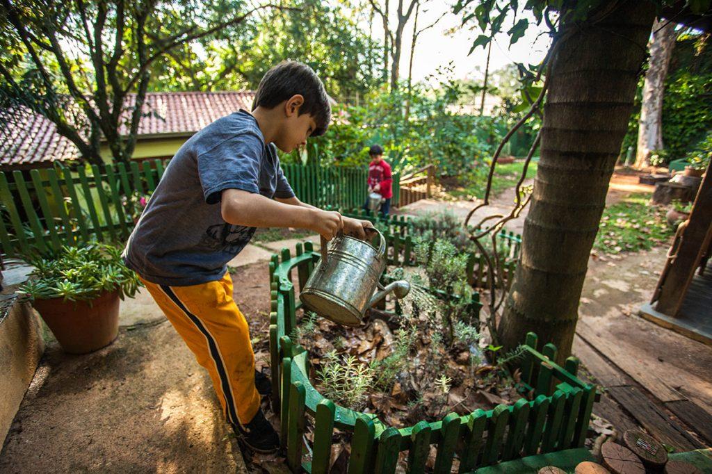 aula de jardinagem 2 - Colégio Micael Educação Infantil